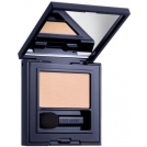 Estee-lauder-019-infamous-orchid-pure-color-envy-eye-shadow